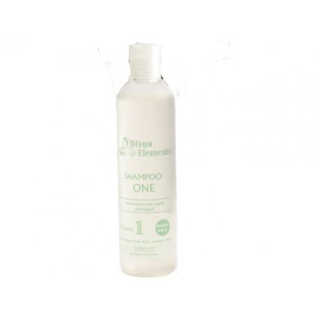 Shampoo one - non contiene sls -les-ammidi-sale